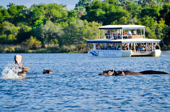 Enjoy excellent game viewing during a Chobe River cruise.