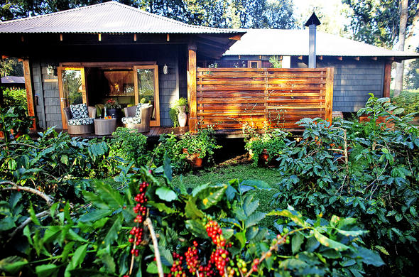 Private deck with scenic views of the Arusha Coffee Lodge gardens.