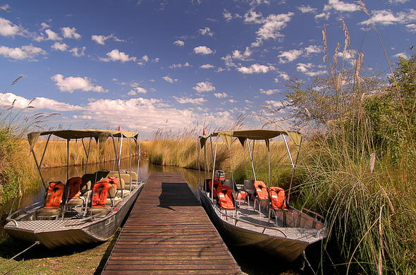 Exploring Moremi Game Reserve by speedboat.