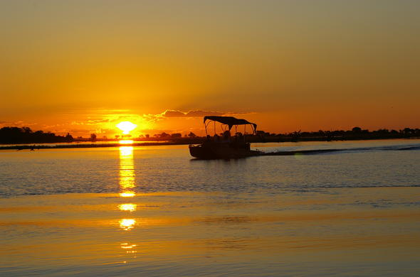 Experience Chobe River at sunset on a boat safari.