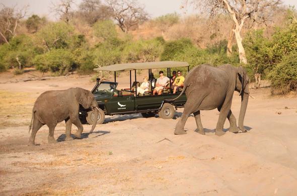 Botswana Safari Guide | Chobe National Park  Chobe River