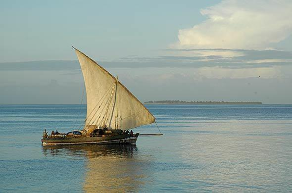 Late afternoon dhow trip out of Zanzibar Serena Inn