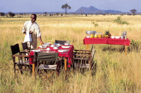 Savour a delicious breakfast in the African bush.