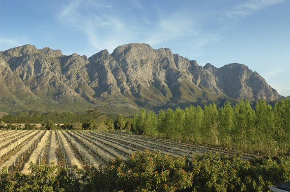 The beautiful Franschhoek winelands in Cape Town.