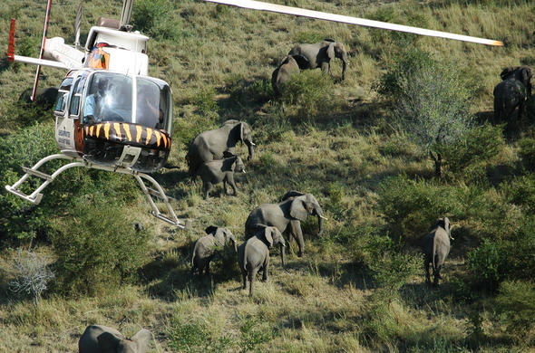 Helicopter safari over Zambezi National Park