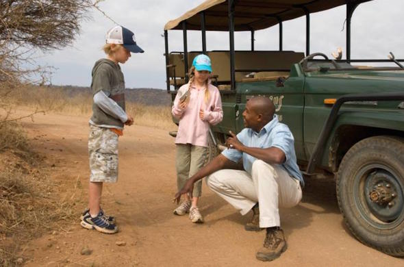 Children can go on game drives.