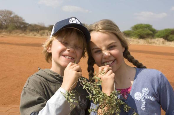 Children tasting plants as a safari activity.