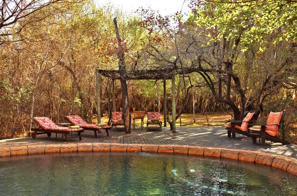 Leisure around the pool in between game drives at Jacis Tree Lodge.