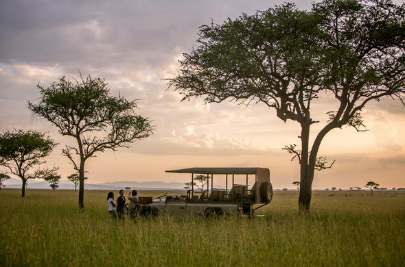 Game drive on a luxury Serengeti Safari in Tanzania.