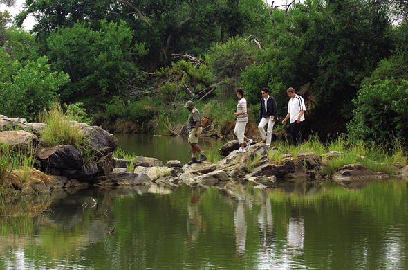 Guided walking safaris with an armed ranger.