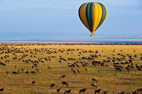 Ballooning over the Masai Mara