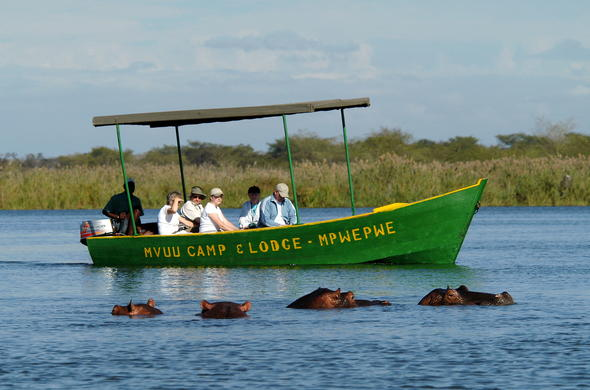 Hippo sighting on boat safari on Shire River.