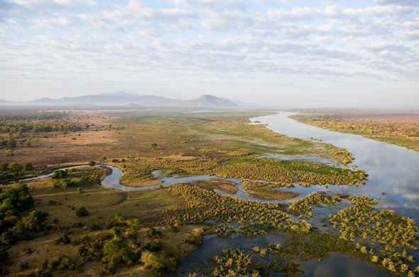 Witness the beauty of the floodplains in Liwonde National Park.