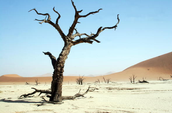Deadvlei pans in Namibia.