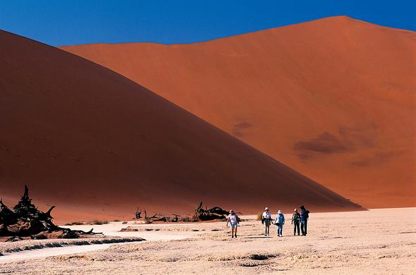 Red dunes of Sossusvlei. Namibi
