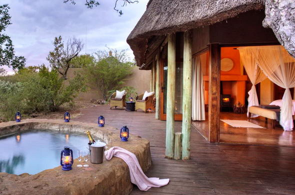 Relax in private plunge pool in malaria free Madikwe.