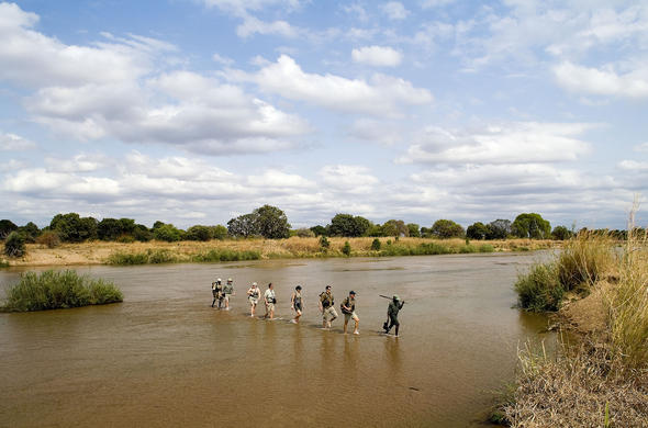 South Luangwa, Zambia. Walking safari with Robin Pope