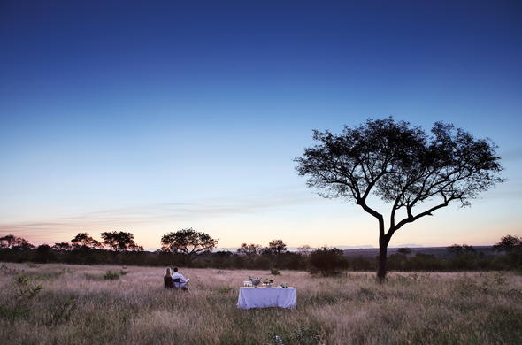 Bush dining in the African Wilderness.