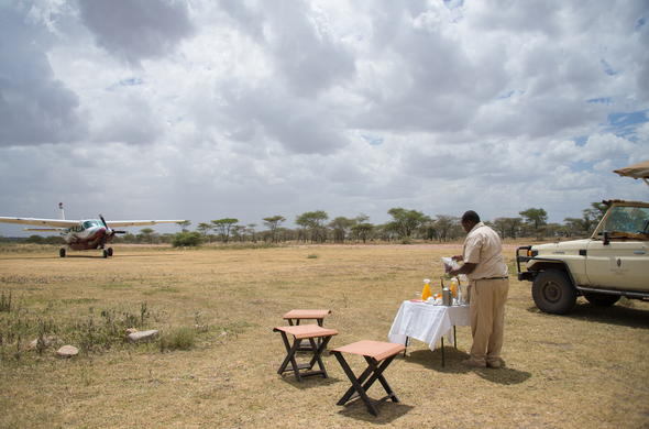 Fly directly to an airstrip in the Serengeti.