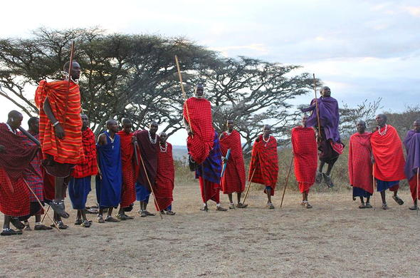Cultural interactions with Maasai tribesmen in Ngorongoro Conservation Area.