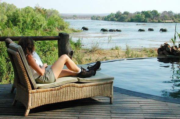 See wildlife in the Zambezi River from your deck chair.