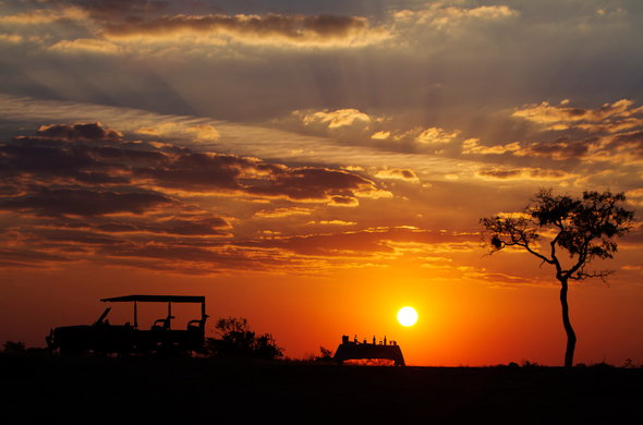 Enjoy the Botswana sunset on a game drive.