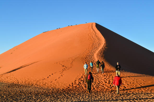 Walk up Dune 45 in the Namib Desert in Sossusvlei.