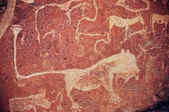 Rock carvings near Twyfekfontein Country Lodge