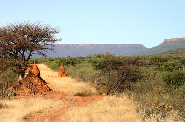 Waterberg Plateau in Namibia.